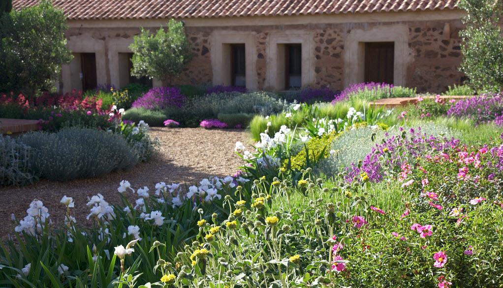 Un jard n mediterr neo despiertaymira Plantas jardin mediterraneo