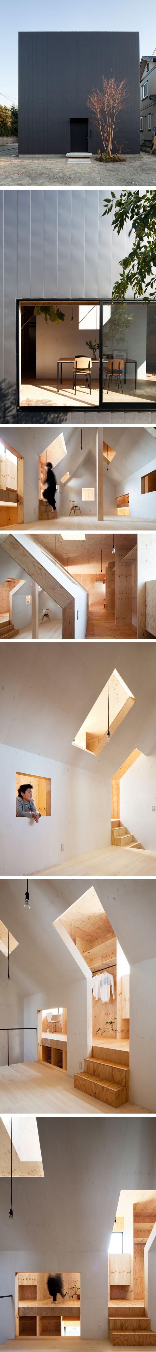 Ant house