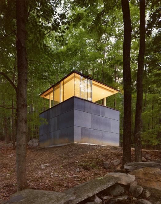 Biblioteca en el bosque