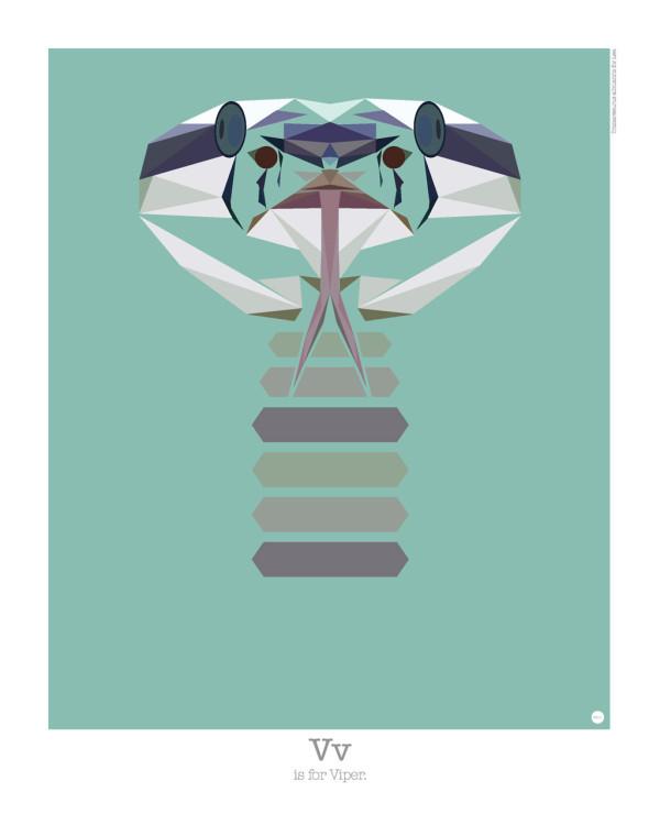 animal-alphabet-v-viper-mat-mabe-600x750