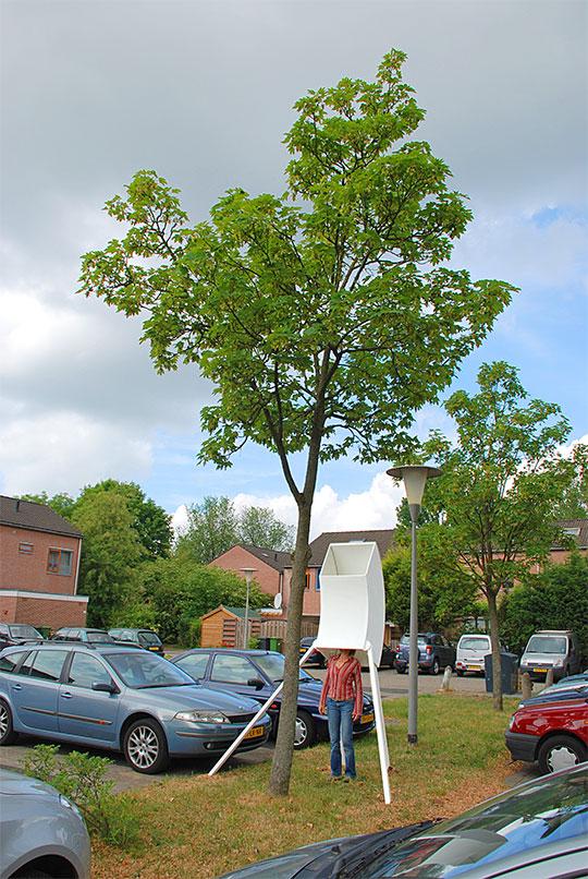 Lichtbomen-trunk-docu-web-3