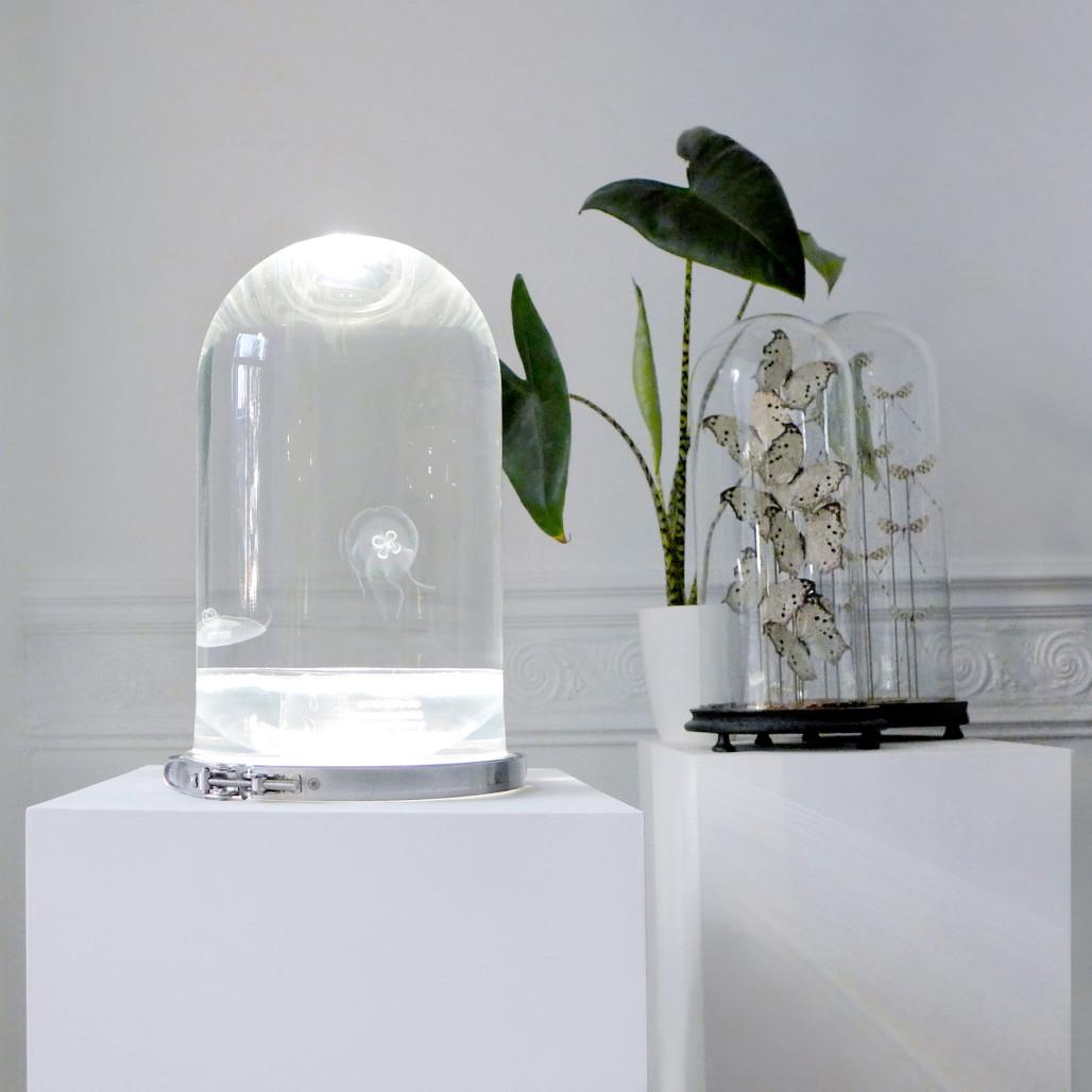 ¿Y si decoráramos el salón con medusas?
