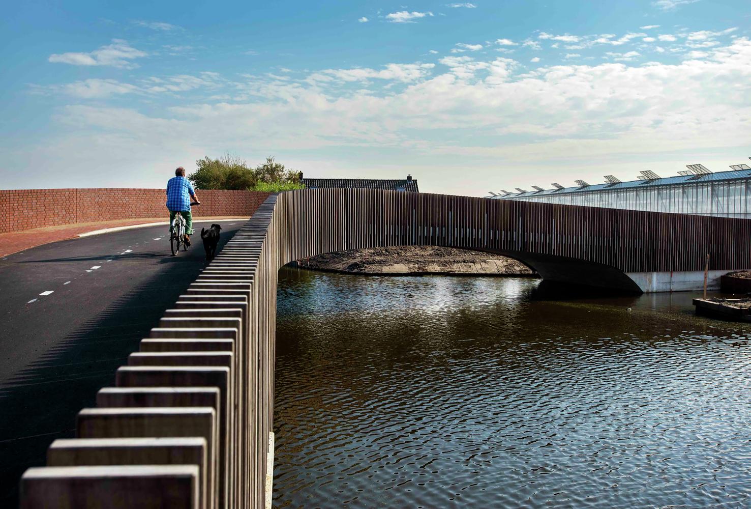 Un puente para los murciélagos holandeses