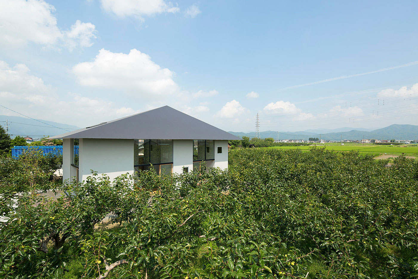 El huerto japonés que inspiró una casa unifamiliar