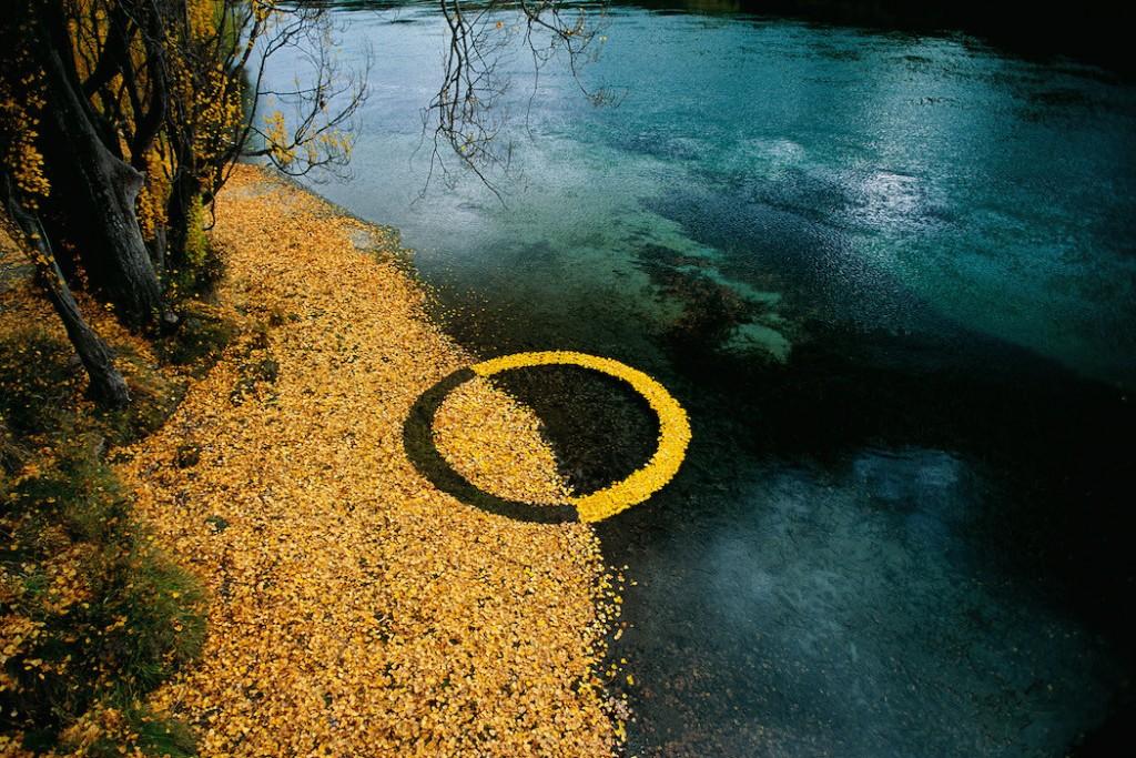 Imagen de Martin Hill Hojas en circulo en otoño