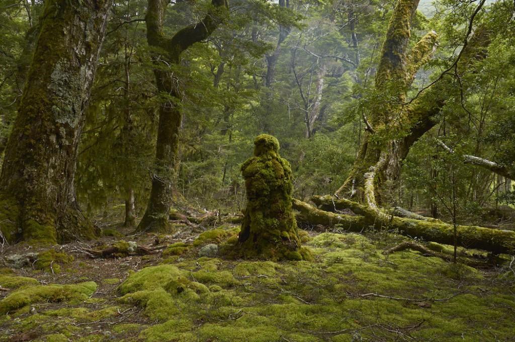 Escultura el guardian del bosque de Martin Hill