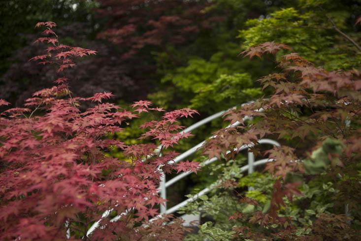 kazuyuki-ishihara-chelsea-photo-jim-powell-despiertaymira (7)