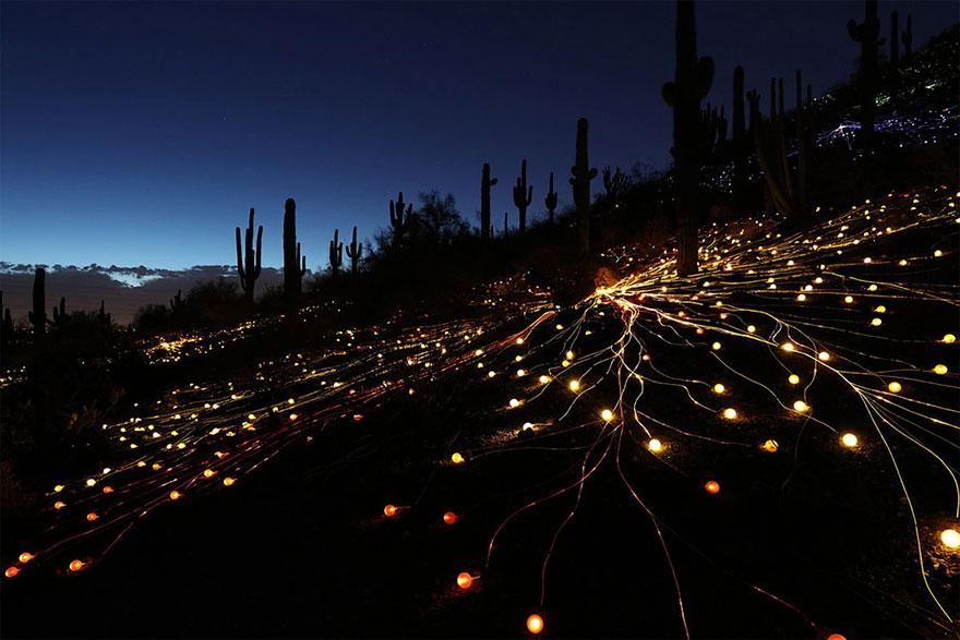 detalle de instalacion lumínica en el desierto de arizona