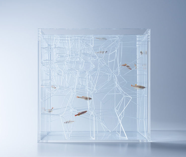 Detalle estructura abstracta acuario waterscape