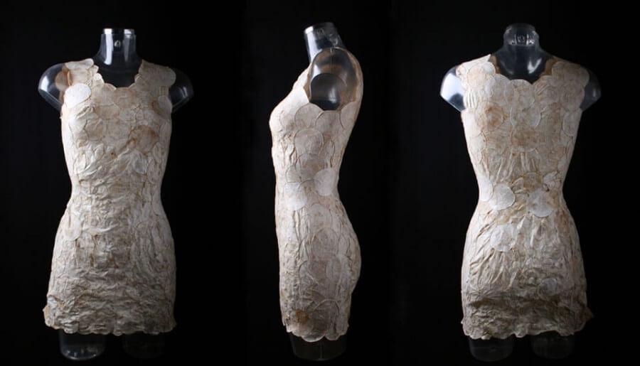 Vestidos de micelios que pueden servir de abono a las plantas