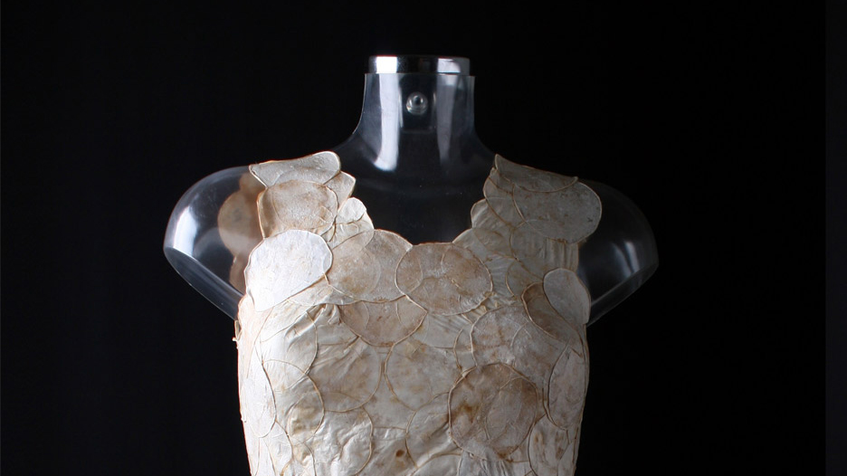 Detalle parte superior del vestido con micelios