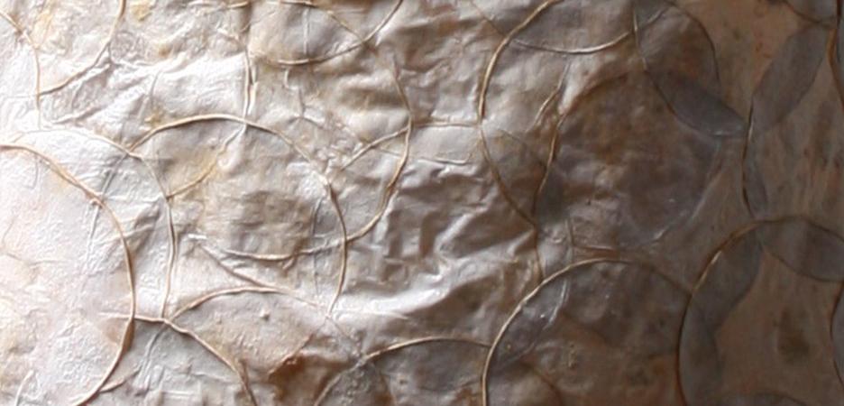 Tela natural hecha a base de micelios