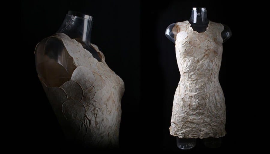 El asombroso tejido de micelios de Aniela Hoitink