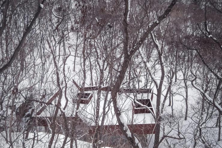 rockview-teahouse-despiertaymira-1