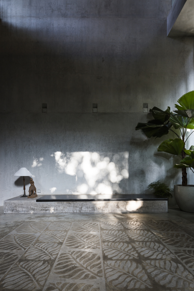 thong-house-despiertaymira-4
