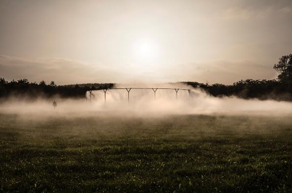 Detalle del Fog Assembly en Versalles