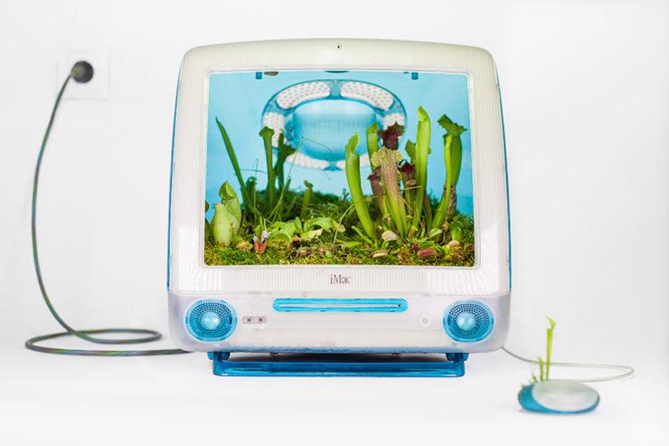 Detalle del proyecto Plant your Mac! de Monsieur Plant