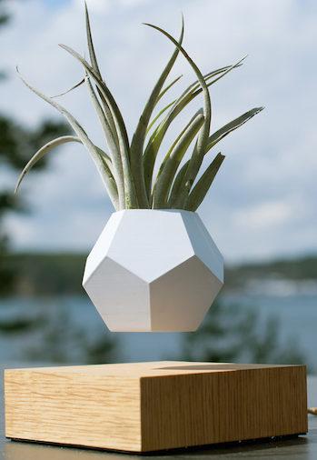 El día en que las plantas comenzaron a levitar en Suecia
