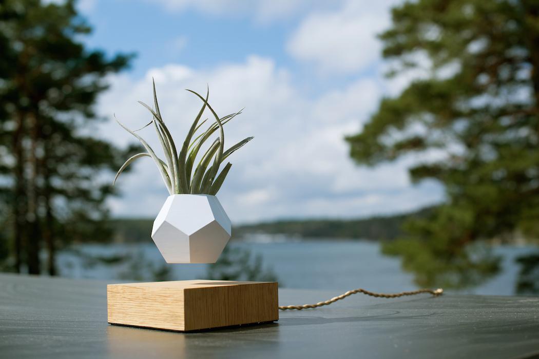 LYFE un diseño elegrante y minimalista