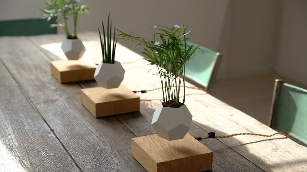 Los tres modelos de minimaceteros Life