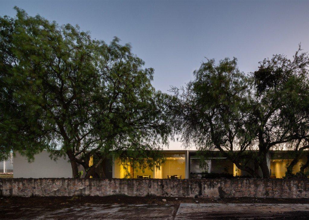 Next Vegetales por CC Arquitectos