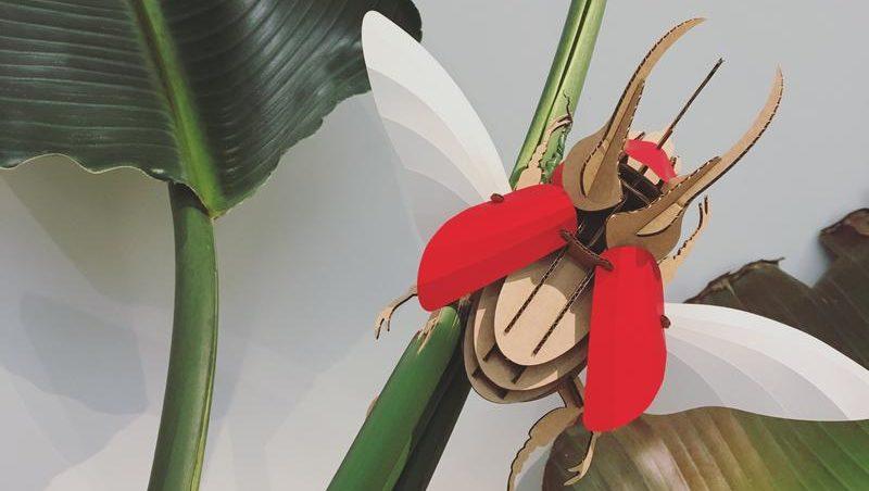 Lo último de Assembli: Ponga un escarabajo en su vida
