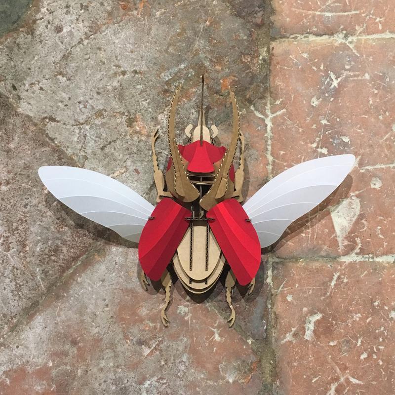 escarabajo atlas rubi red en batavia