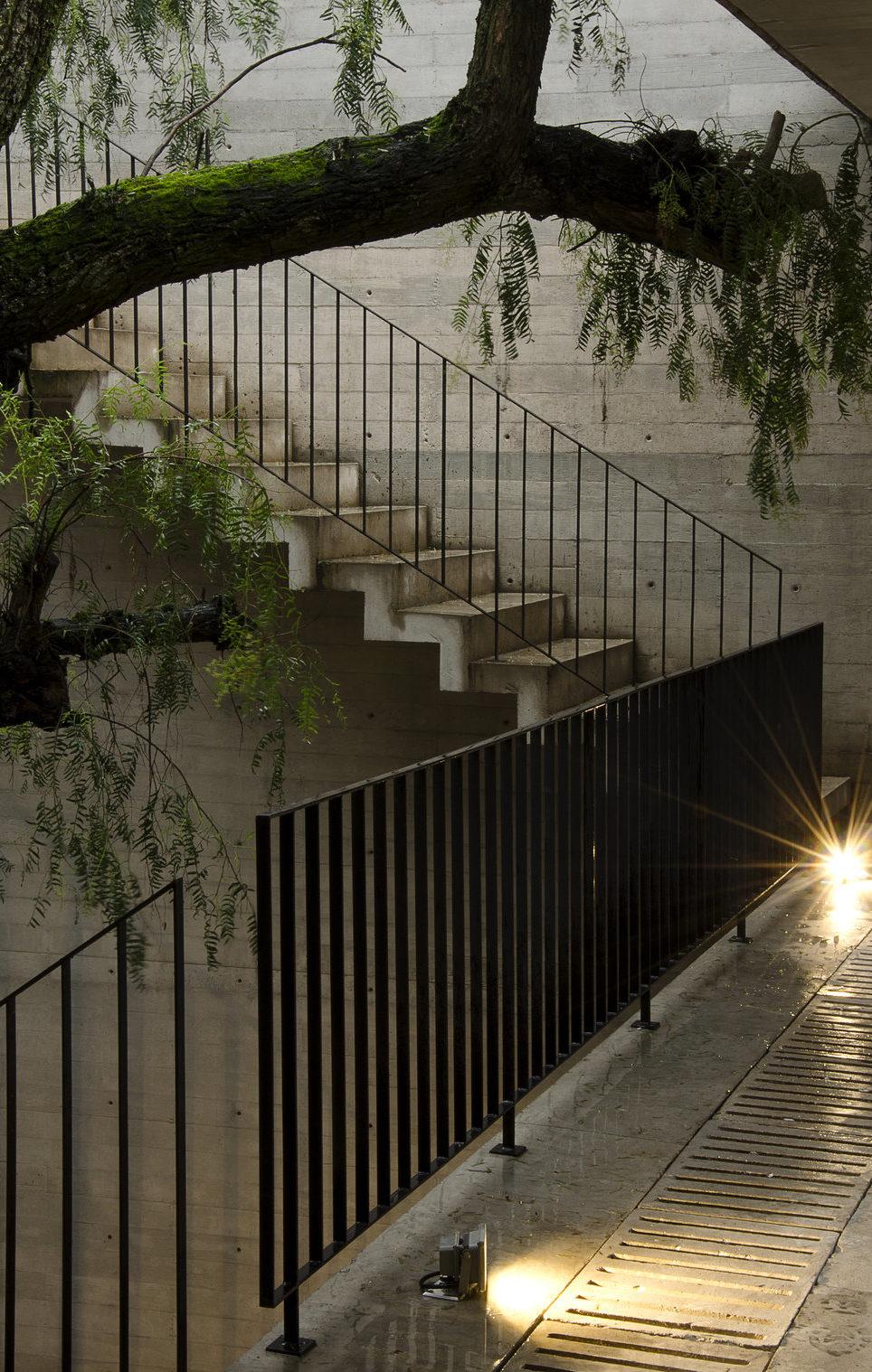 La mexicana Casa BC rezuma naturaleza a través de su fina piel de hormigón