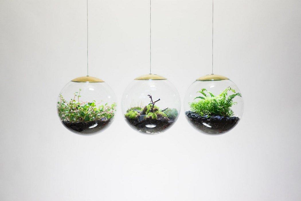 varios modelos de la lampara terrario globe