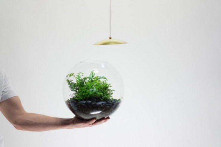como desmontar globe, la lampara terrario