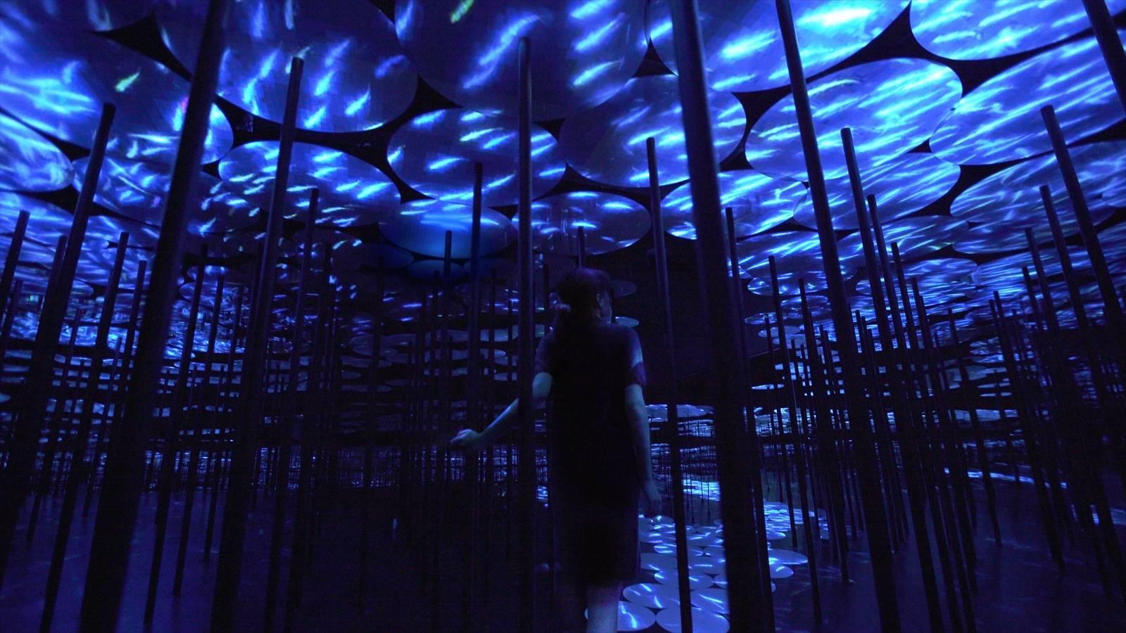 instalacion digital museo de toyo