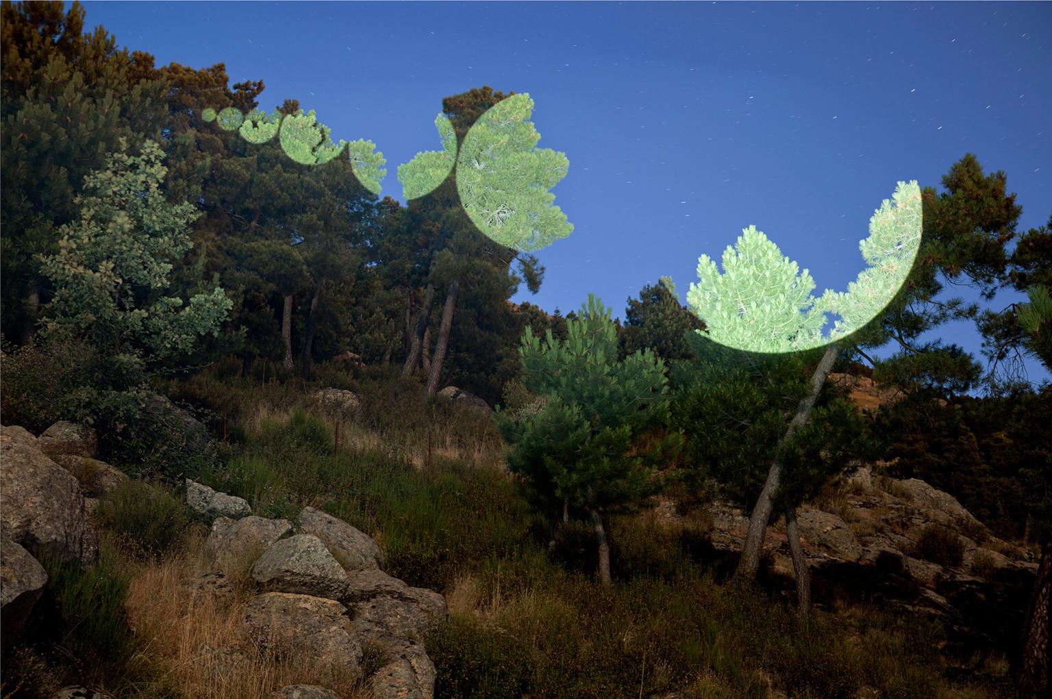 fotografía del trabajo artístico de Javier Riera