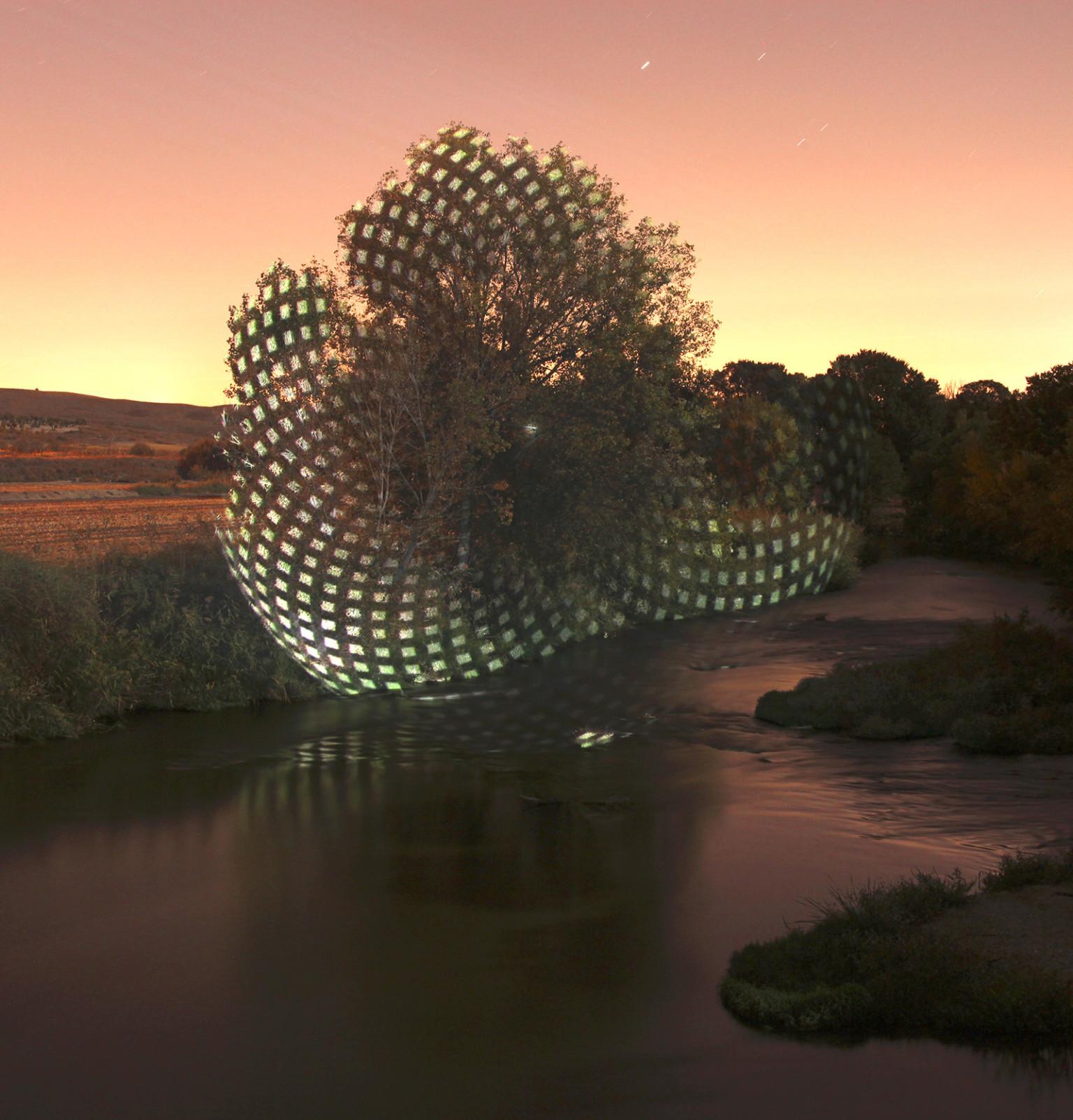 espirales de luz en la naturaleza fotografía de javier riera
