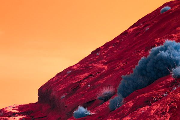 fotografía en rojo intenso que recuerda al magma del que surgio la isla