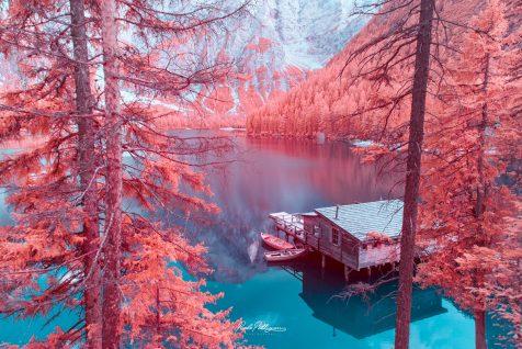 La fotografía infrarroja de Paolo Pettigiani nos traslada a mundos irreales