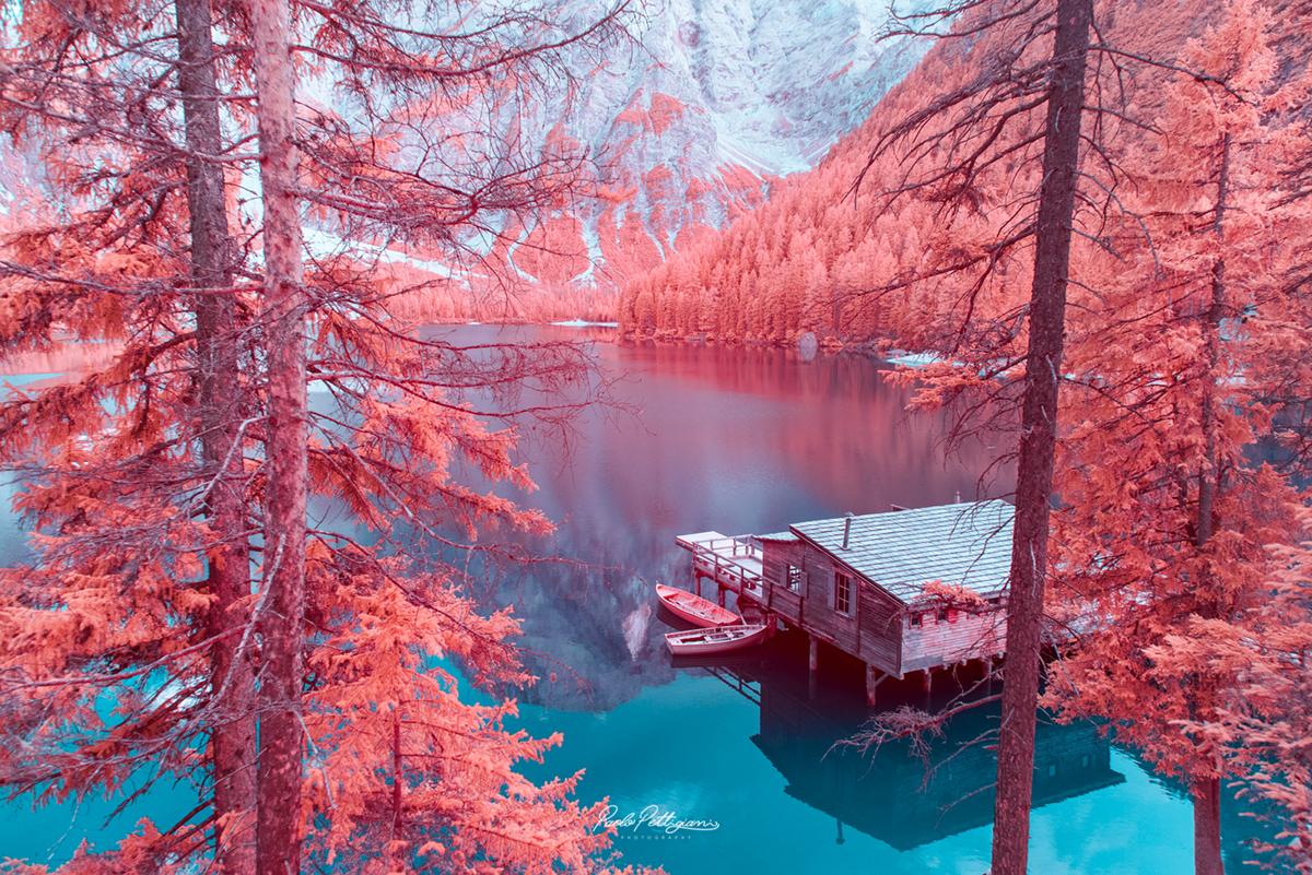 fotografía de paolo pettigiani utilizando el diseño grafico