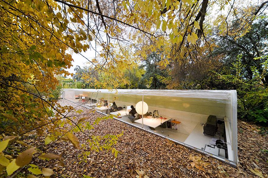 Estudio Selgas Cano literalmente excavado en un bosque